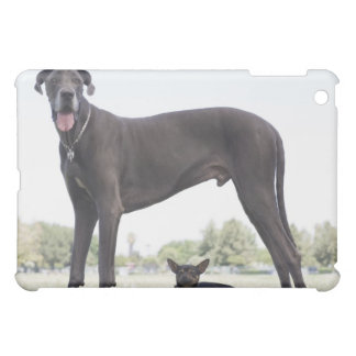 Great dane and small mixed-breed dog cover for the iPad mini