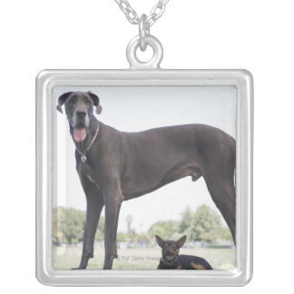 Great dane and small mixed-breed dog square pendant necklace