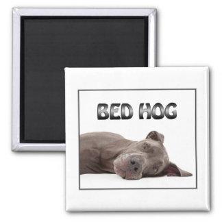Great Dane Bed Hog Square Magnet