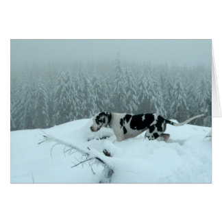 "Great Dane ""Cash"" In The Snow Card"
