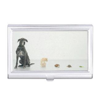 Great Dane, cat, guinea pig, tortoise and slug Business Card Holder