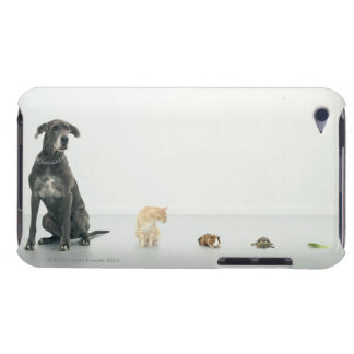 Great Dane, cat, guinea pig, tortoise and slug iPod Touch Covers