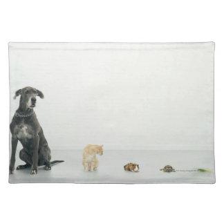 Great Dane, cat, guinea pig, tortoise and slug Placemat