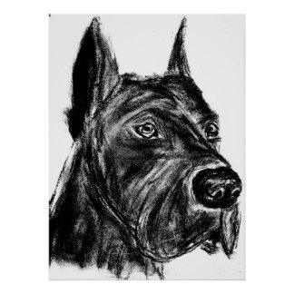great dane charcoal sketch poster