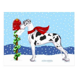 Great Dane Christmas Mail Harlequin UC Postcard
