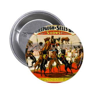 Great Dane Circus Show 6 Cm Round Badge