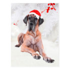 Great Dane Dog Hat Merry Christmas Postcard