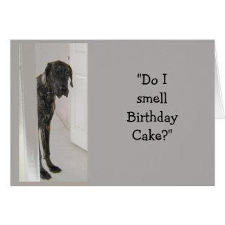 Great Dane Dog Humor SON Birthday Cake Fun Greeting Card