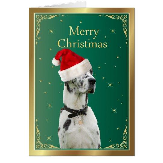 Great Dane dog in red santa hat christmas