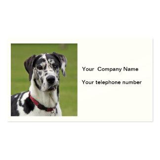 Great Dane dog photo business card