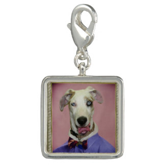 Great Dane Dressed Up Charm