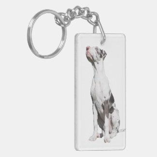 Great Dane harlequin puppy dog beautiful photo Double-Sided Rectangular Acrylic Key Ring