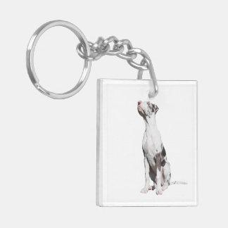 Great Dane harlequin puppy dog beautiful photo Double-Sided Square Acrylic Keychain