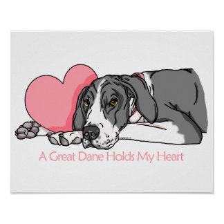Great Dane Holds Heart Mantle UC Poster