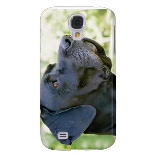 Great Dane iPhone Case Galaxy S4 Case