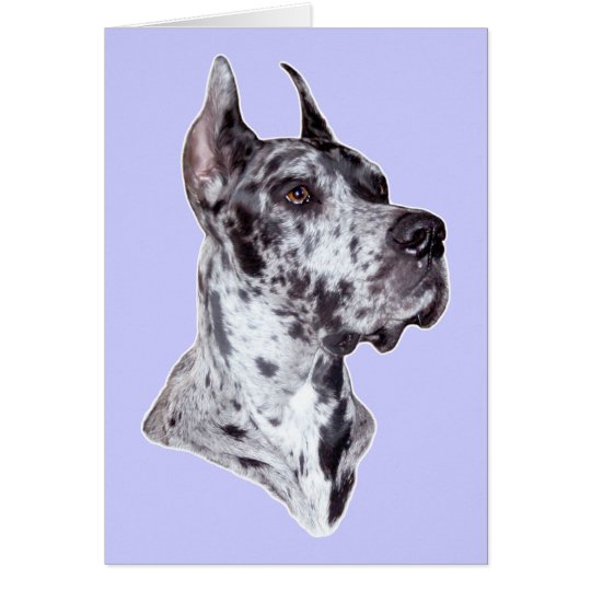 Great Dane Merle Cropped Card