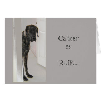 Great Dane Pet Dog Divorce Cancer I'm here for you Card