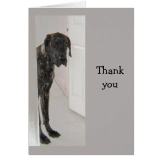 Great Dane  Pet Dog Humor Thank you Greeting Card