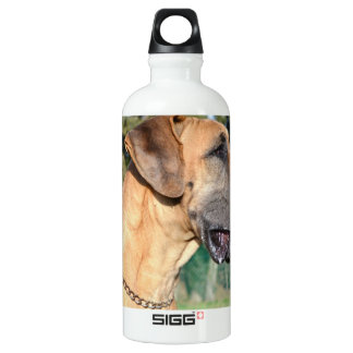 Great Dane Photo SIGG Traveller 0.6L Water Bottle