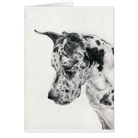 Great Dane Portrait Blank Greeting Card