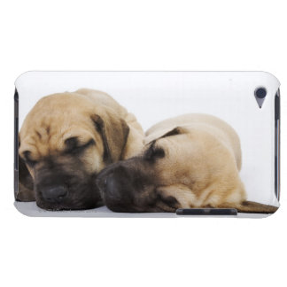 Great Dane puppies sleeping side by side in iPod Touch Cases