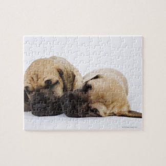 Great Dane puppies sleeping side by side in Jigsaw Puzzle