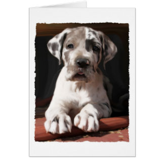 Great Dane Puppy Card