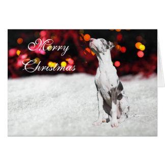 Great Dane puppy dog cute custom Christmas Card