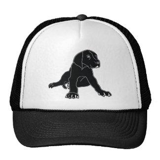 Great Dane Puppy Hats