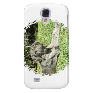 Great Dane Puppy iPhone 3G Case Galaxy S4 Cases