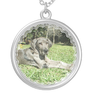 Great Dane Puppy Necklace