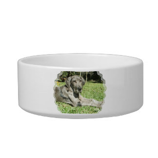 Great Dane Puppy Pet Bowl