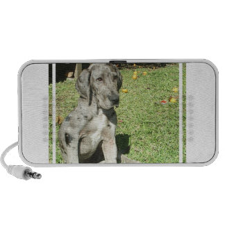 Great Dane Puppy Portable Speakers
