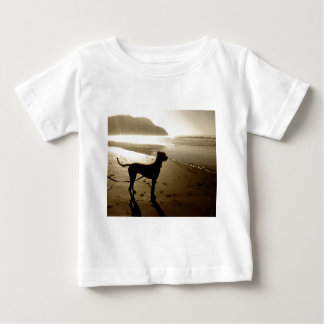 Great Dane Puppy Sunset Baby T-Shirt