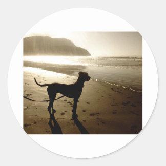 Great Dane Puppy Sunset Classic Round Sticker