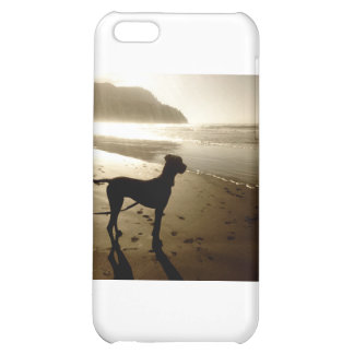 Great Dane Puppy Sunset iPhone 5C Covers