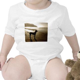 Great Dane Puppy Sunset Bodysuits