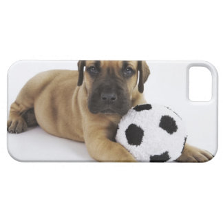 Great Dane puppy with toy soccer ball iPhone 5 Cover