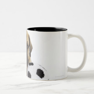 Great Dane puppy with toy soccer ball Two-Tone Coffee Mug