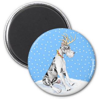 Great Dane Reindeer Christmas Harlequin Magnet