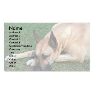Great Dane resting Business Cards
