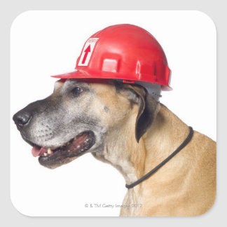 Great Dane wearing a red construction helmet Square Sticker