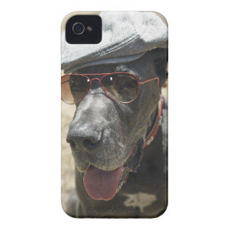 Great Dane wearing hat and sunglasses Case-Mate iPhone 4 Case