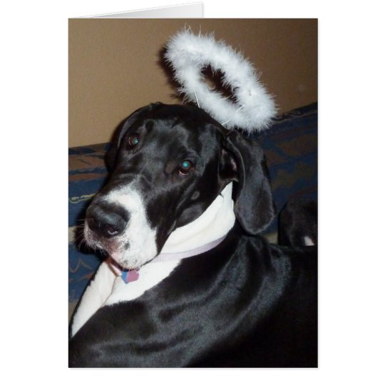 Great Dane with Angel Halo Greeting Card