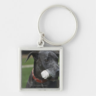 Great Dane with bone Silver-Colored Square Key Ring