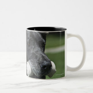 Great Dane with bone Two-Tone Coffee Mug