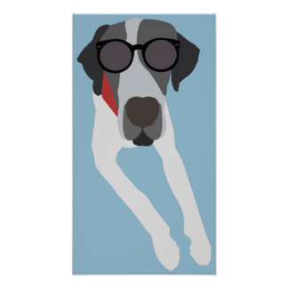 Great dane with sunglasses poster