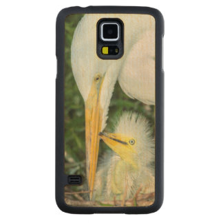 Great Egret and baby egret at Gatorland Carved Maple Galaxy S5 Case