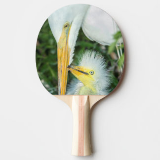 Great Egret and baby egret at Gatorland Ping Pong Paddle