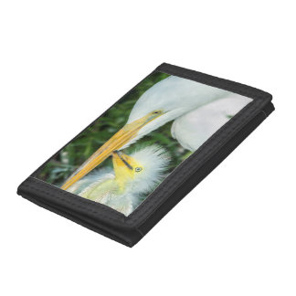 Great Egret and baby egret at Gatorland Trifold Wallet